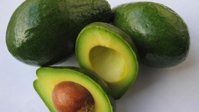 Avocado generic 2_2137258495029154-159532
