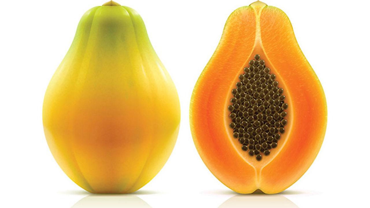 Maradol papayas79120902-159532