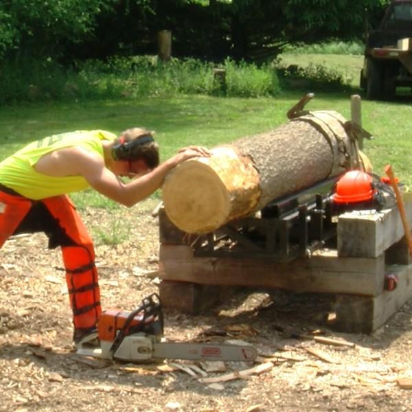 Morrisville Lumberjack_1529356232868.jpg.jpg