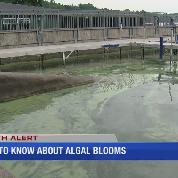 What_to_know_about_algal_blooms_0_20180808221752