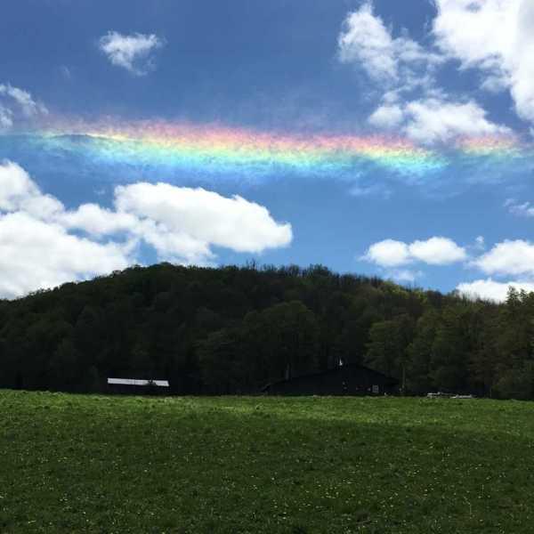 Fire Rainbow Pic_1557618639454.jpg.jpg