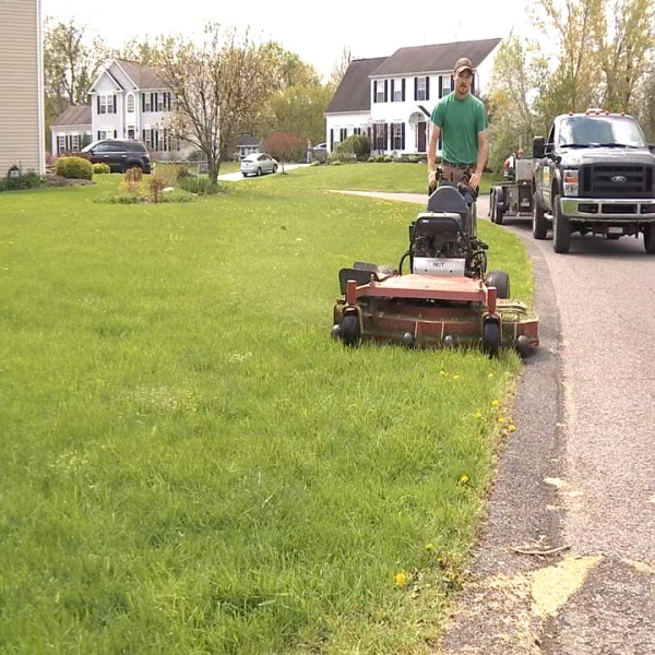 lawn stand up mower paradise grounds