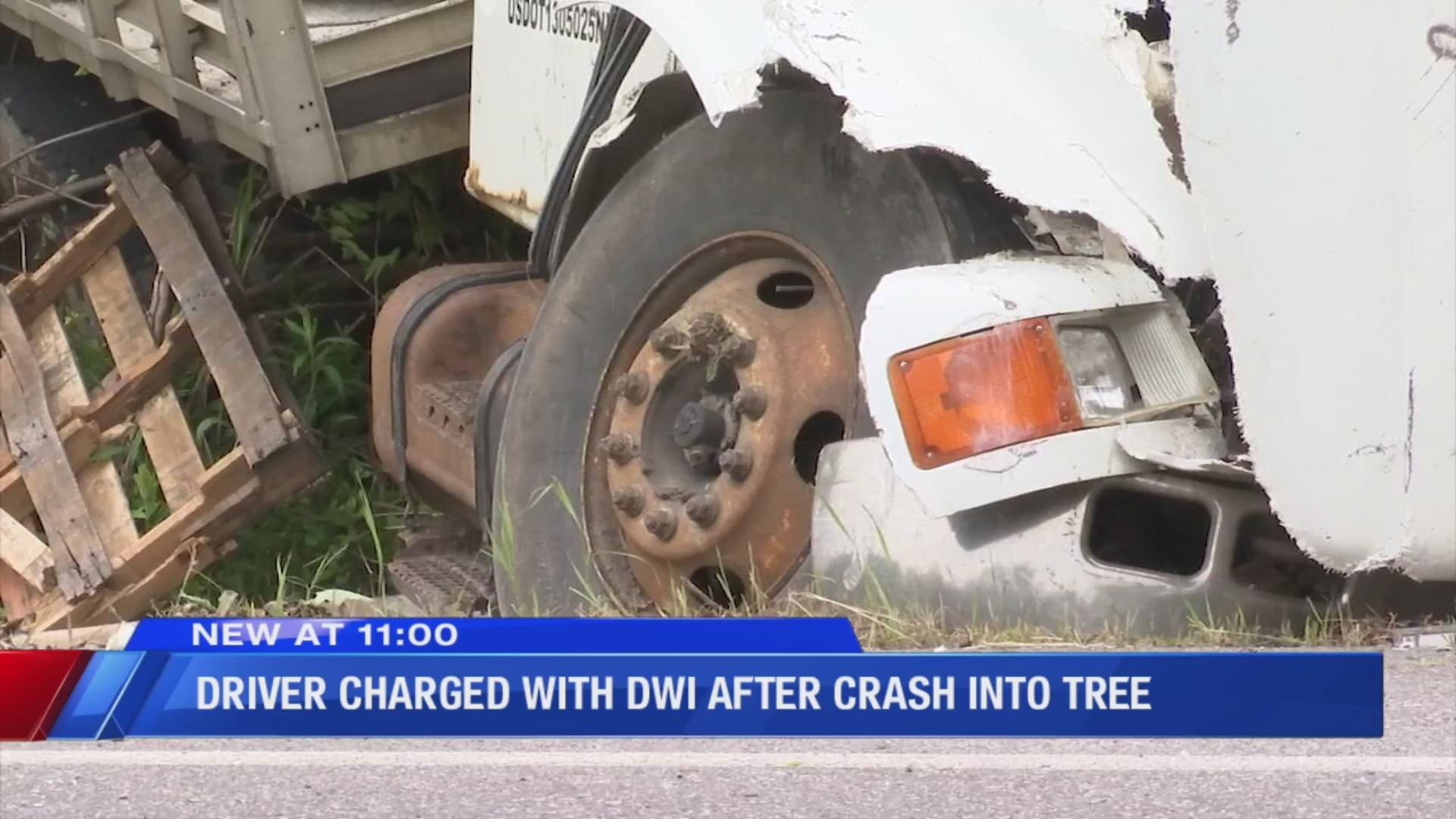 Driver charged with DWI after crashing into a tree