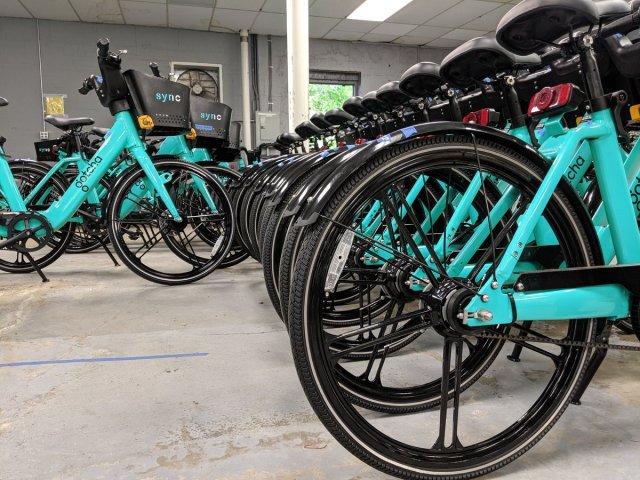 Software glitch affecting Gotcha bike-share program