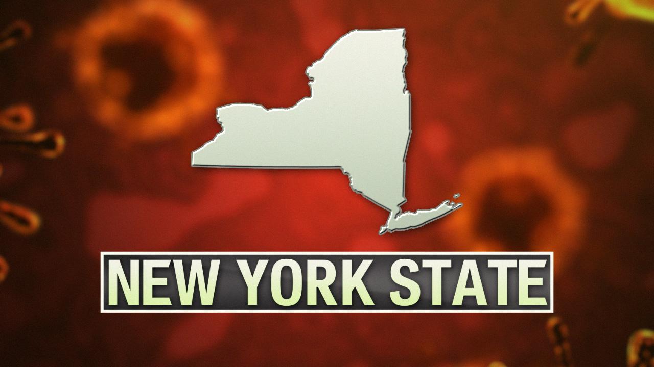 New York State coronavirus graphic